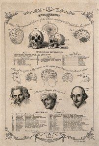 Phrenological chart of the skull and brain, 1818