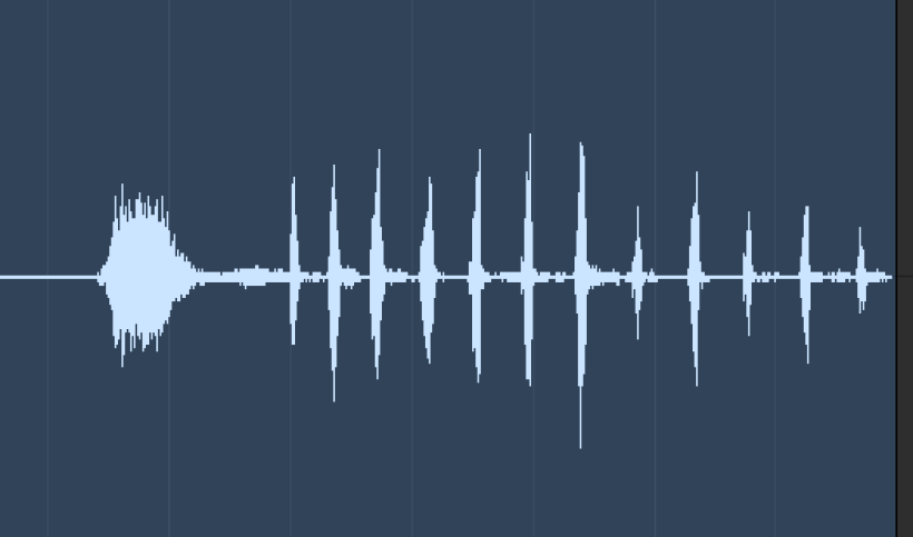 A screenshot of a sound wave of John Zeiler (Dr. Eric Aspinall)'s laughter. It resembles a fish skeleton, or a skeletal tree.